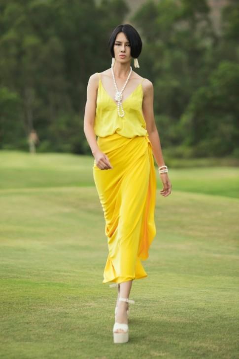 Bộ sưu tập màu vàng, họa tiết rồng và hoa tulip