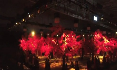 Rừng hoa đào 7 tỷ đồng khoe sắc trong show 10 năm của Đỗ Mạnh Cường