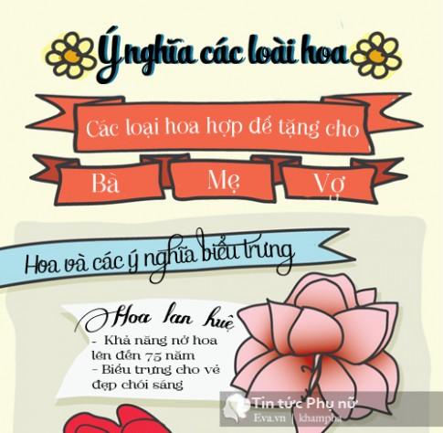 Đừng tưởng tặng hoa là dễ khi mỗi loại lại có ý nghĩa riêng đặc biệt