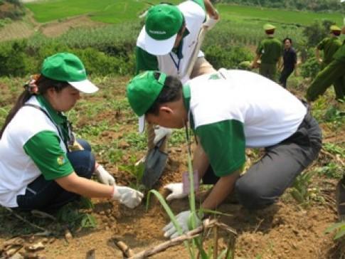 Honda tham gia 'Ngày hội trồng cây' 2010