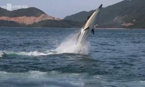 Tàu cá heo lặn biển đầu tiên ở Nha Trang
