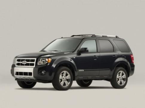 Xe thay thế Ford Escape sẽ xuất hiện đầu năm 2011