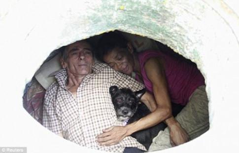 Cảnh sống đối lập của 2 gia đình nghèo chọn ống cống làm nhà