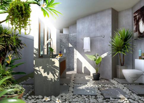 Chọn và bố trí loại cây phù hợp với từng căn phòng để sức khỏe tốt nhất, nhà đẹp nhất