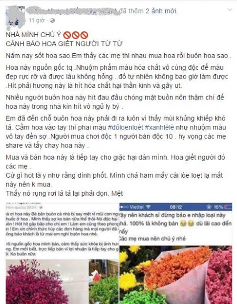 Dân mạng cảnh báo hóa chất độc hại từ hoa sao khô đang tràn ngập thị trường hoa Tết