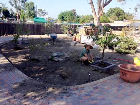 Dạo một vòng thăm vườn rau củ quả của sao Việt xem ai khéo tay