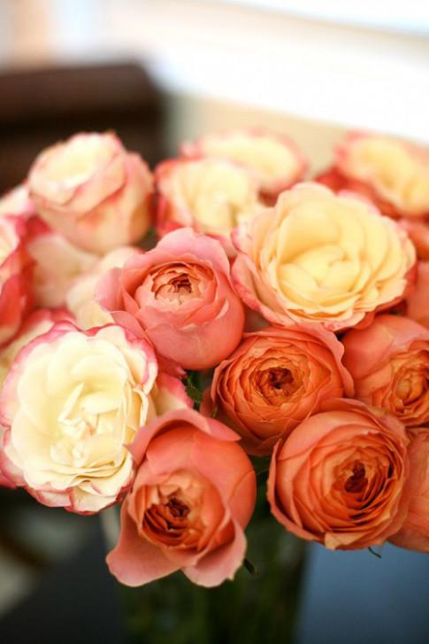 Hoa đẹp 20-10: Cắm hoa Hồng để chồng thêm yêu