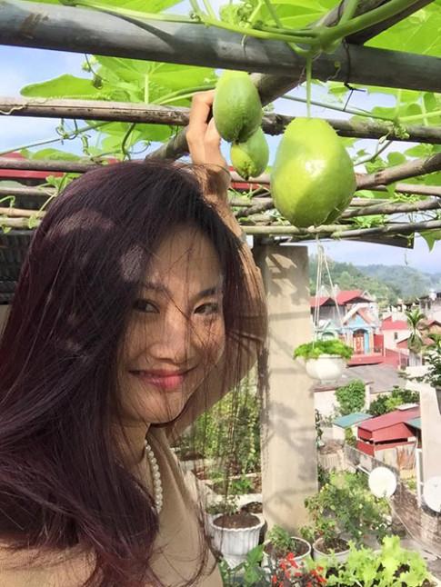 Khu vườn đủ các loại rau quả, hoa cỏ từ thùng xốp của mẹ Việt