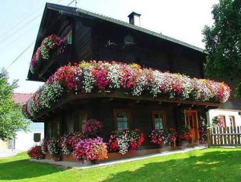 Những căn nhà ngập sắc hoa tươi ngỡ như trong truyện cổ tích