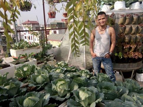 Ông bố đảm trồng rau sạch, thả cá trên sân thượng phục vụ vợ con