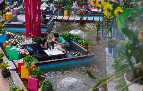 Quán cà phê cho khách ngồi dưới mặt nước ngắm cá Koi