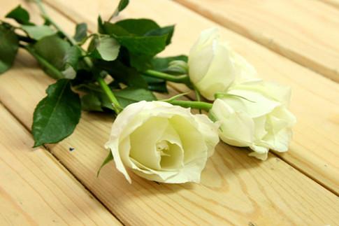 Cách làm hoa hồng cầu vồng cực dễ