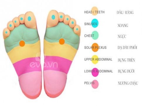 Vị trí lòng bàn chân giúp giảm đau ở 7 bộ phận ứng trên cơ thể bé