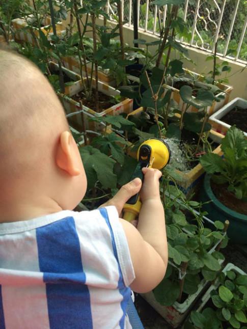 Con trai Lê Phương trồng rau, bắt sâu, con Hồng Nhung lội bùn cấy lúa
