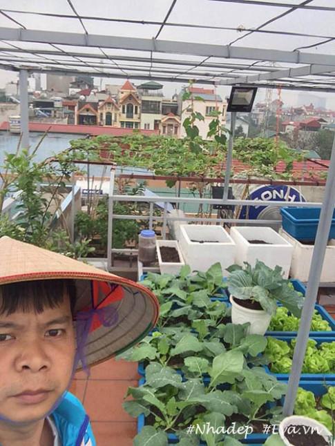 """Ngưỡng mộ vườn rau quả xanh tốt """"vạn người mê"""" trên sân thượng của ông bố Hà Thành"""