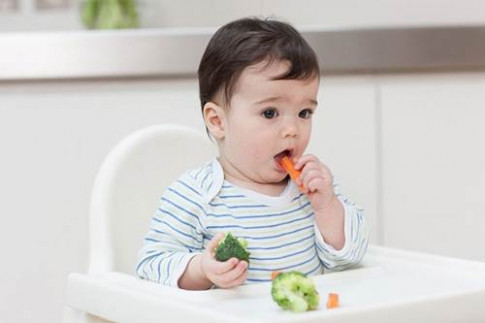 Cách tập cho con ăn dặm rau củ quả tốt nhất