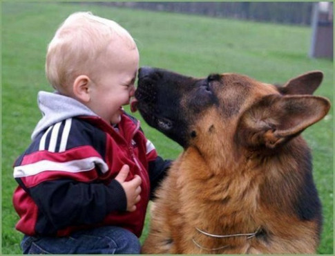 Mặc kệ tất cả, chỉ cần có một chú chó ở bên, cuộc sống của trẻ sẽ đầy ắp tiếng cười