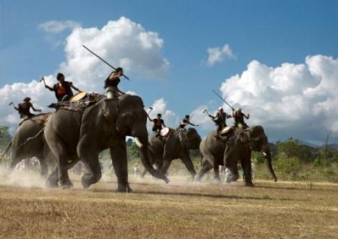 Truyện cổ tích cho bé: Con voi với người quản tượng già
