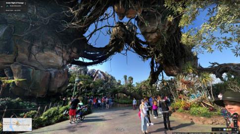 Từ nay, bạn có thể tham quan Walt Disney World ngay tại nhà mình
