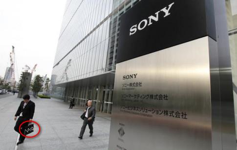 """Vaio ra mắt smartphone Android, cạnh tranh với chính Sony: """"Người dưng ngược lối"""""""